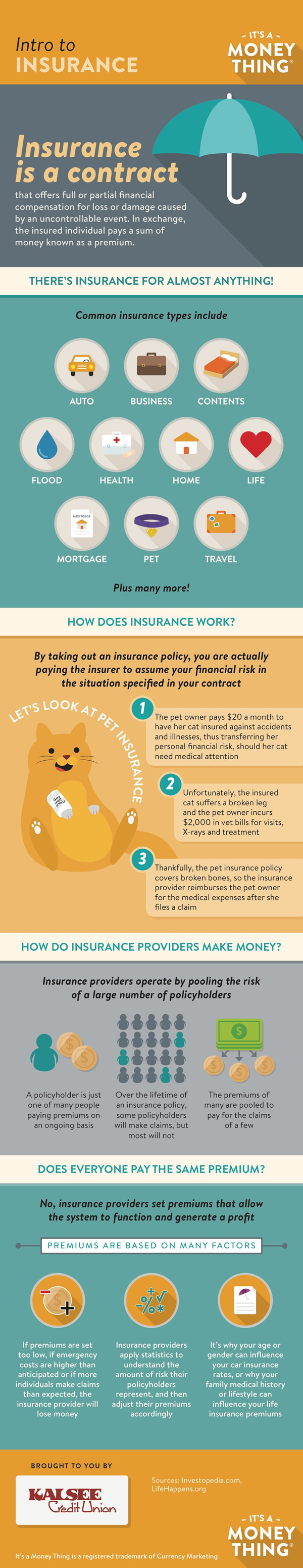 Intro to Insurance infographic, click for transcription